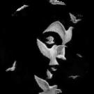 Radha Sundaram Avatar